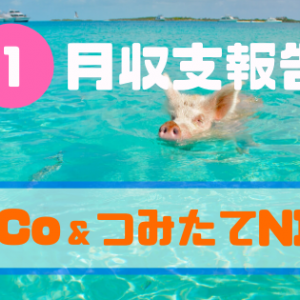 【iDeCo&つみたてNISA】2020年1月収支報告