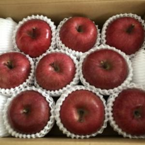 アークスのりんご優待が届きました