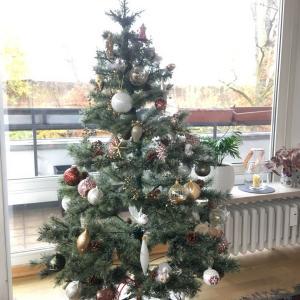 クリスマスツリーとクリスマス雑貨を飾りました♪