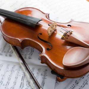 大人の初心者が楽器を始めるのに、不向きな楽器と向いている楽器