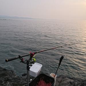 自粛明けのフカセ釣り~根府川~