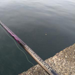 釣れないじゃなく釣らなかった日