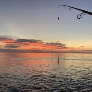 2020 道南 鮭釣り情報