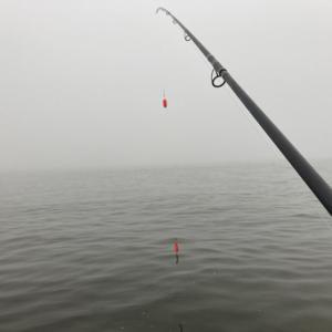 2020 道南 鮭釣り情報 ②