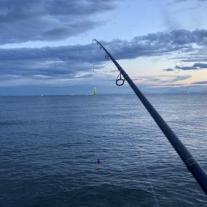 2020 道南 鮭釣り情報 ③