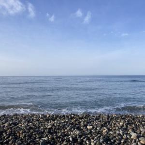【道南 海サクラマス釣行 ③】 ハイシーズン到来!?