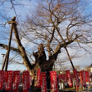 2020/12/05 秩父今宮神社 八大龍王さんが二柱いる。