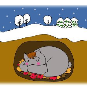 冬眠のお知らせzzz