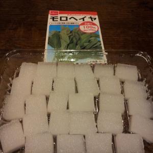 100均グッズでモロヘイヤを水耕栽培する