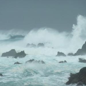 1959年9月26日、「伊勢湾台風」来襲日