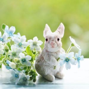 1990年3月31日は、大阪で花と緑の国際博覧会開催式記念日
