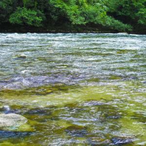 1996年7月7日は、「川の日」