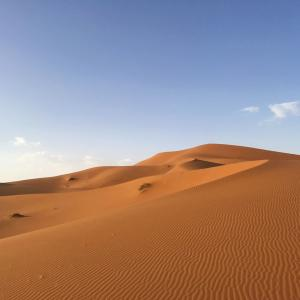 1994年6月17日、「砂漠化および干ばつと闘う世界デー」制定