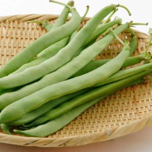 今日はインゲン豆の日