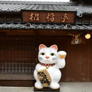 今日は招き猫の日