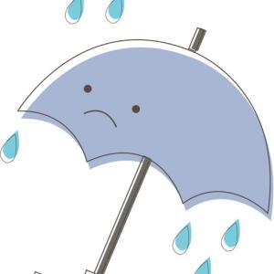 今日は傘の日