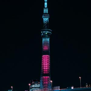 今日は東京の日