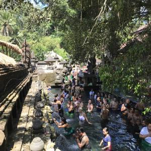 バリ・ウブドのティルタウンプル寺院の聖水で沐浴