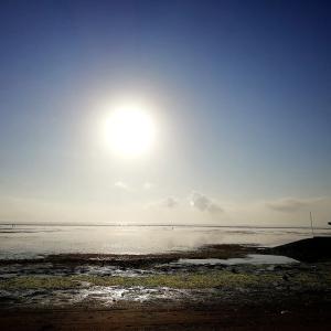 太陽礼拝108回−2019年末の太陽礼拝108回は湘南のビーチでやりましょう🎶🌅