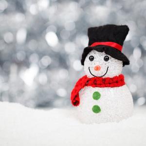 この冬は雪が少なくて助かりました。