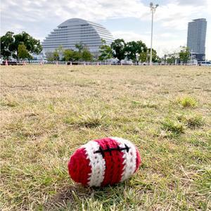 でっかいあみぐるみラグビーボールとニットピクニック、アイドール大阪とドルミス初出展のお知らせ♪