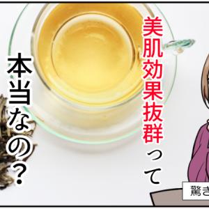 美肌食品と噂の白茶の効能とは(科学論文を比較して)