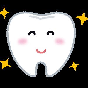 【乳歯からの生え変わり】永久歯がまだ生えてこない!不安な日々の体験談