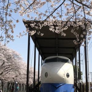【鉄道写真】0系新幹線10次車MC21-73