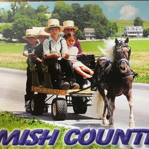 アーミッシュが生活するペンシルバニア州ランカスターを観光して興奮した話