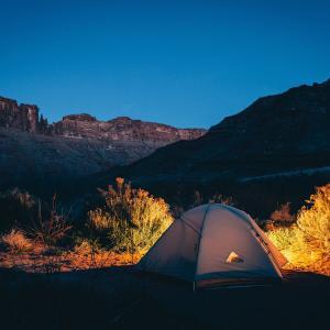 コロナ渦でキャンプブーム到来?!トレーラーハウスや山林を購入する人が増加中