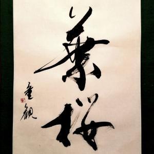 新年度、桜の書を色々 童観書φ(..)