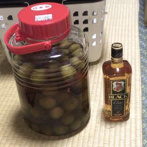 マイブーム(50):ウイスキー梅酒に自作の箱!