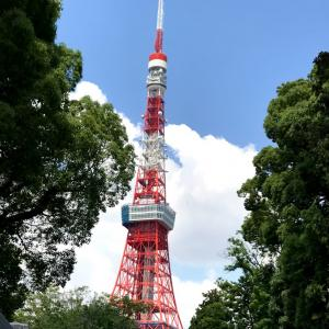 東京へ戻ってきました!