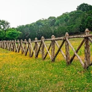 【フレデリックスバーグ(Fredericksburg)】セントラル・テキサスにある小さな街を観光