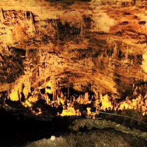 【Natural Bridge Caverns】TXサンアントニオで鍾乳洞体験