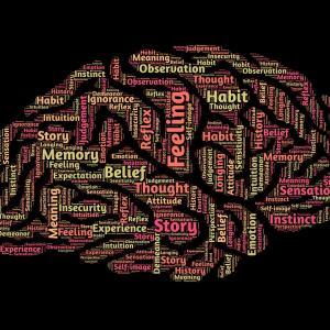 大学の心理学科は忙しい?大学4年の先輩がその疑問に答えます。