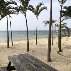 未公開!本部にビーチができてる!うふた浜