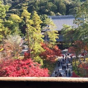 秋の京都へ