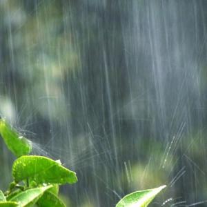 ゲリラ豪雨を予測する機械(レーダー)の特徴は?発明者は誰?どこにあるの?