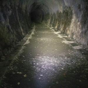 【トレラン】渓谷沿いの廃線跡と暗闇のトンネル、武庫川廃線をゆく