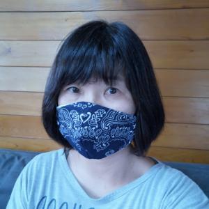 布マスクと引きこもり準備。