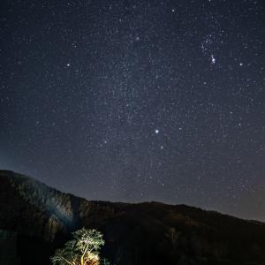 朝倉氏遺跡と冬の星空