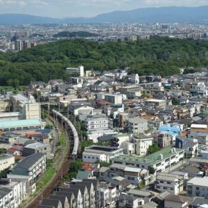 堺市役所展望台を利用して仁徳天皇陵を格安で見物する方法