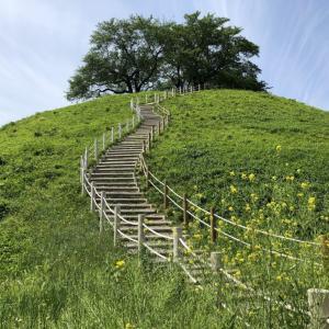 東京から日帰りでOK、登れる大型古墳もある「さきたま古墳公園」をご紹介