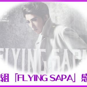 宙組「FLYING SAPA」感想フライングサパ