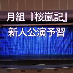 月組『桜嵐記』新人公演予習