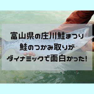 富山県の庄川鮭まつりの鮭のつかみ取りがダイナミックで面白かった!