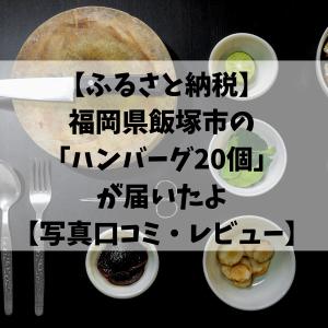 【ふるさと納税】福岡県飯塚市の「ハンバーグ20個」が届いたよ【写真口コミ・レビュー】