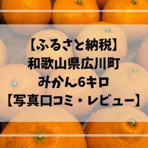 【ふるさと納税】和歌山県広川町でみかん6キロ【写真口コミ・レビュー】