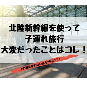 北陸新幹線を使って旅行したときに大変だったこと。上野駅は使わないほうがいい!